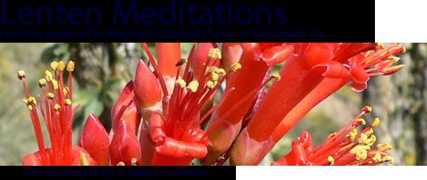 Lenten Meditations from the desert